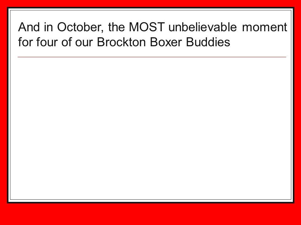 And in October, the MOST unbelievable moment for four of our Brockton Boxer Buddies
