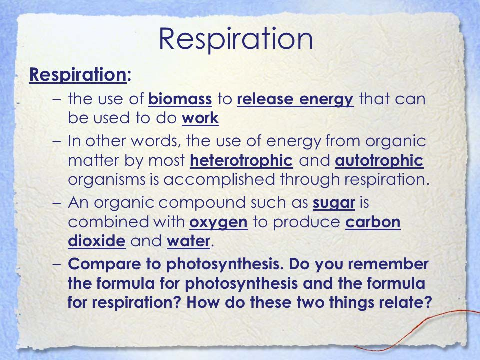 Respiration: –the use of biomass to release energy that can be used to do work –In other words, the use of energy from organic matter by most heterotr
