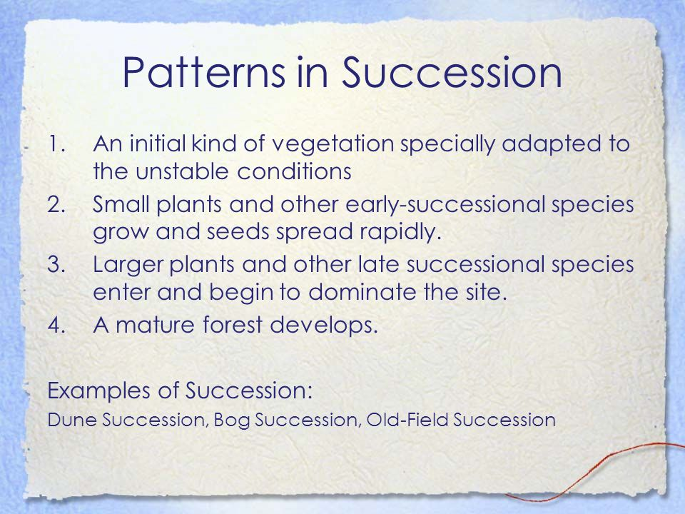 Patterns in Succession 1.An initial kind of vegetation specially adapted to the unstable conditions 2.Small plants and other early-successional specie