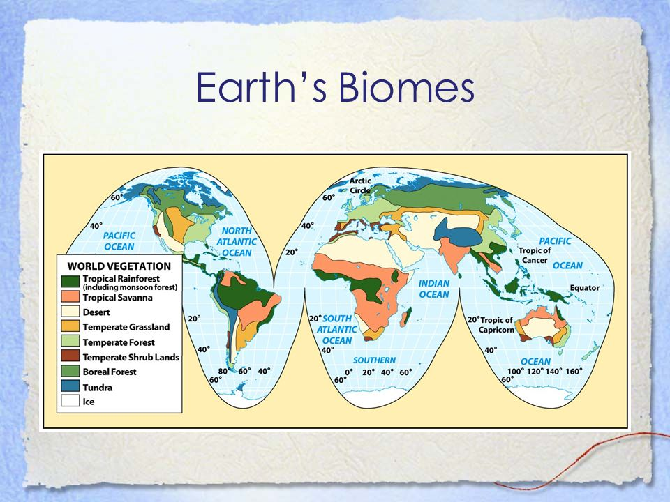 Biome Handout Please use the biome handout with your text to help you to understand and memorize the characteristics of each biome.