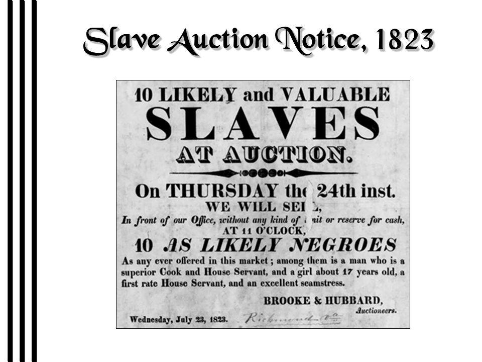 Slave Auction: Charleston, SC-1856