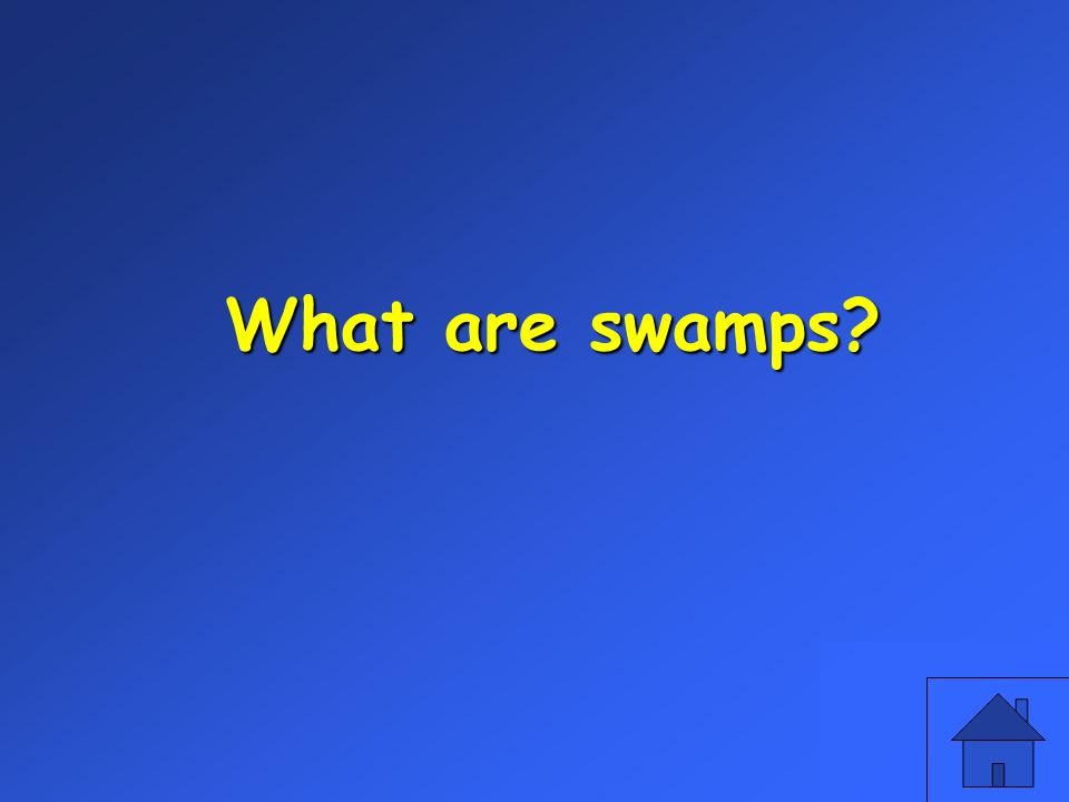 What are swamps