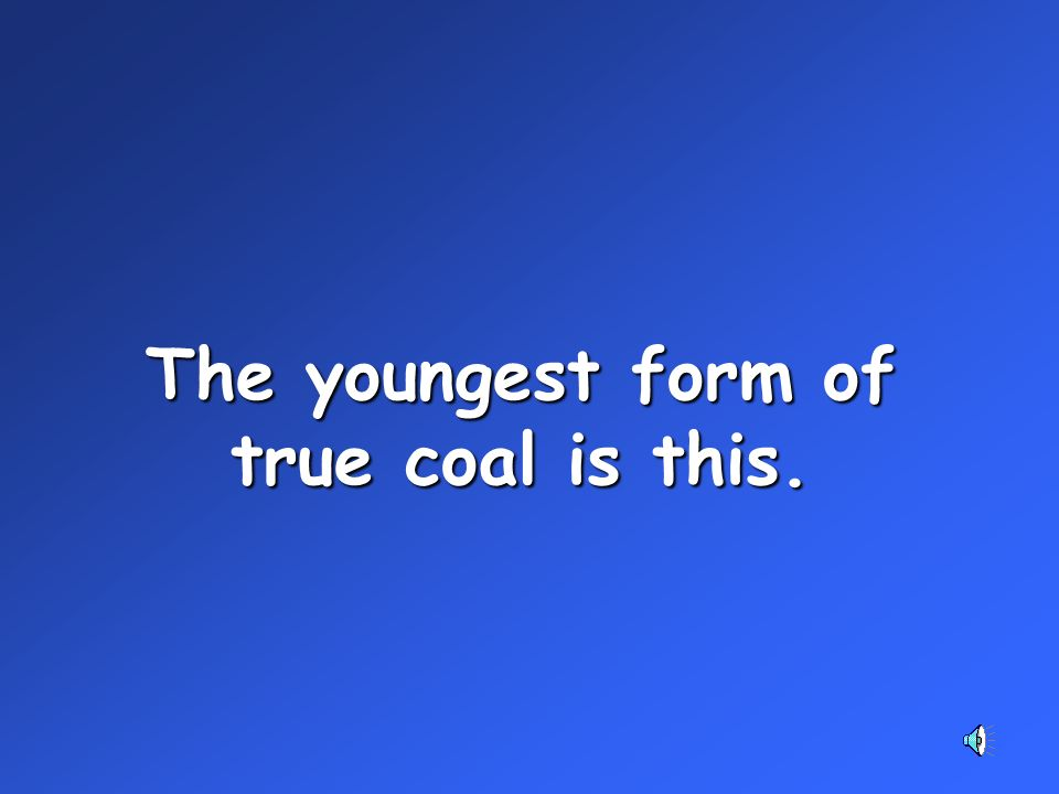 The youngest form of true coal is this.