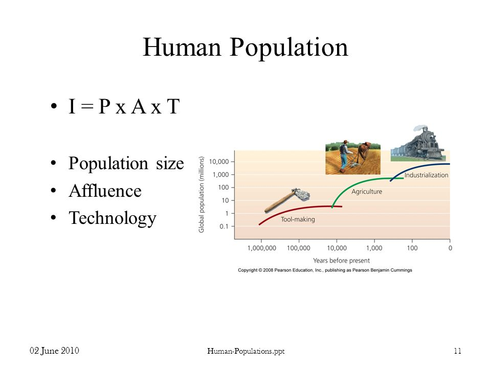 Human Population I = P x A x T Population size Affluence Technology 02 June 2010 Human-Populations.ppt11