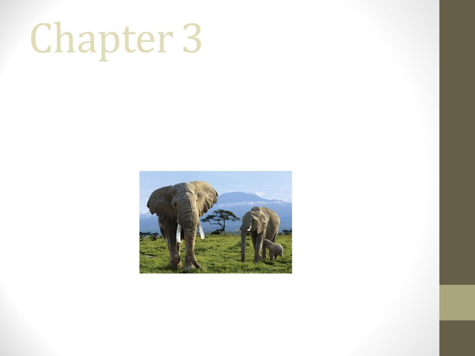 Chapter 3 The Big Picture: Systems of Change