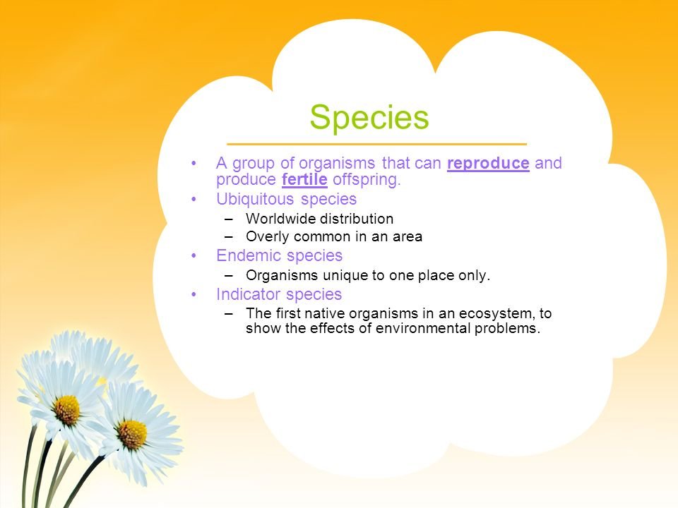 Species A group of organisms that can reproduce and produce fertile offspring.