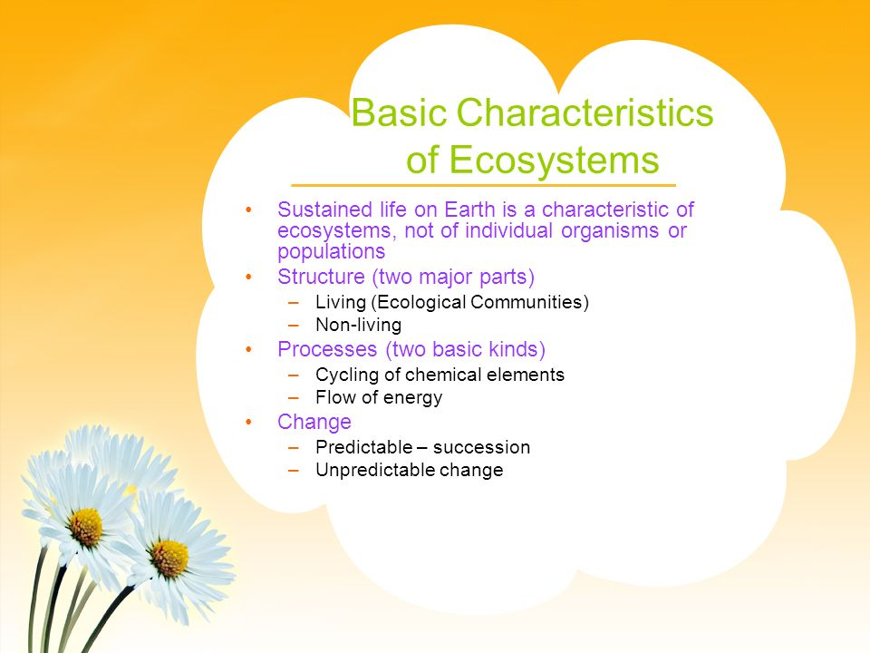 Basic Characteristics of Ecosystems Sustained life on Earth is a characteristic of ecosystems, not of individual organisms or populations Structure (two major parts) –Living (Ecological Communities) –Non-living Processes (two basic kinds) –Cycling of chemical elements –Flow of energy Change –Predictable – succession –Unpredictable change