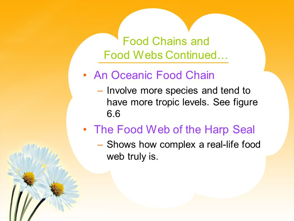 Food Chains and Food Webs Continued… An Oceanic Food Chain –Involve more species and tend to have more tropic levels.