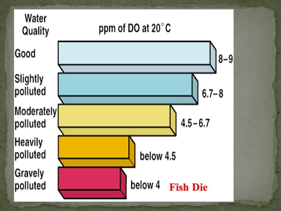 Fish Die