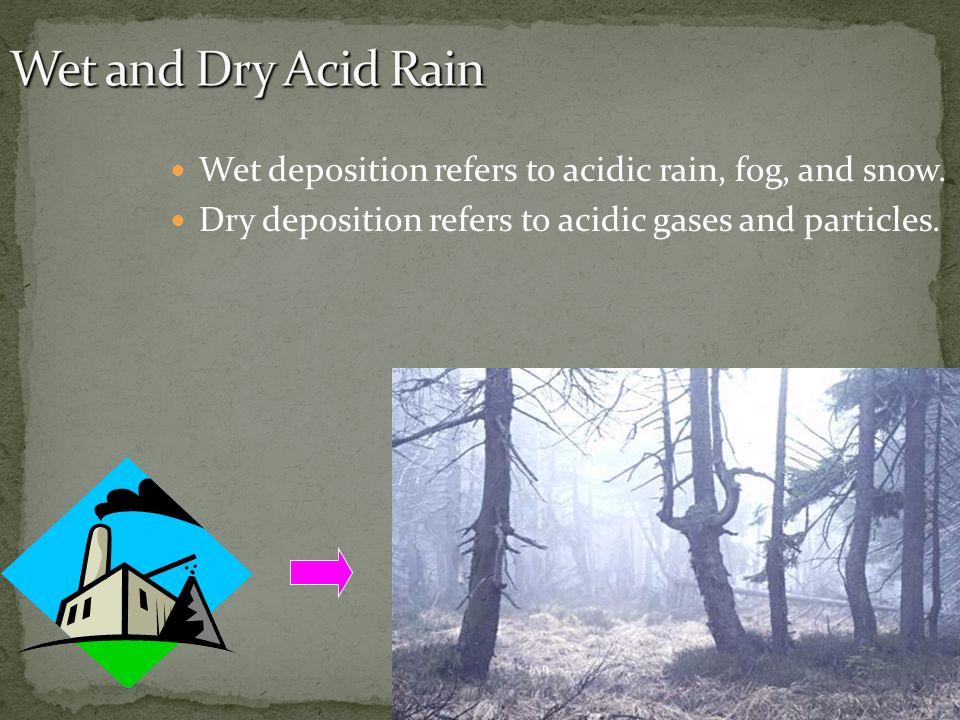 Wet deposition refers to acidic rain, fog, and snow. Dry deposition refers to acidic gases and particles.
