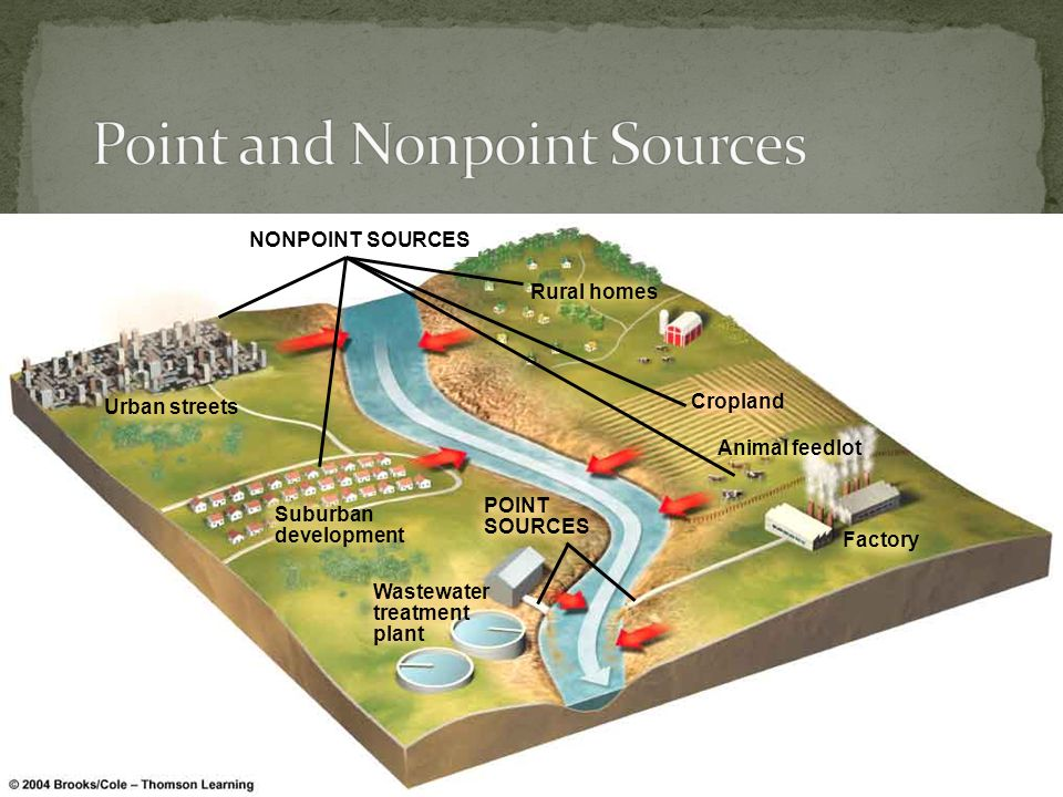 NONPOINT SOURCES Urban streets Suburban development Wastewater treatment plant Rural homes Cropland Factory Animal feedlot POINT SOURCES