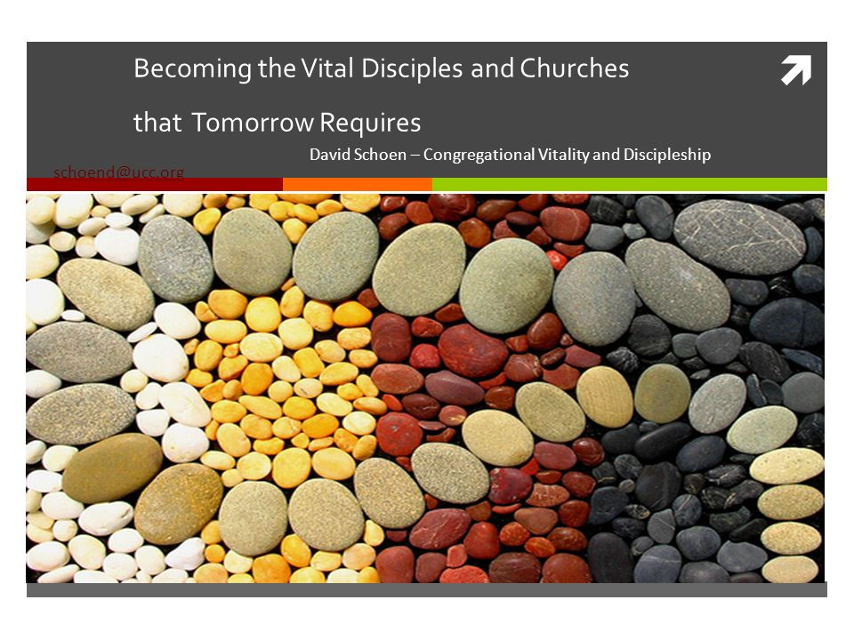 Becoming the Vital Disciples and Churches that Tomorrow Requires David Schoen – Congregational Vitality and Discipleship schoend@ucc.org schoend@ucc.org