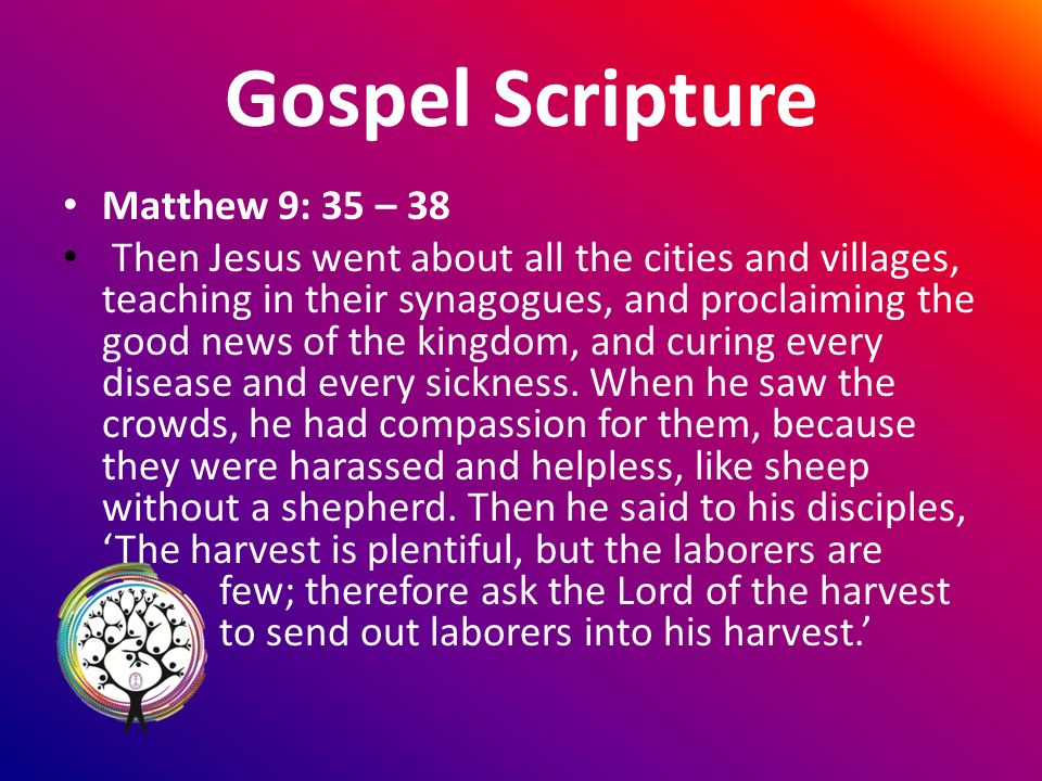Gospel Scripture Matthew 9: 35 – 38 Then Jesus went about all the cities and villages, teaching in their synagogues, and proclaiming the good news of the kingdom, and curing every disease and every sickness.