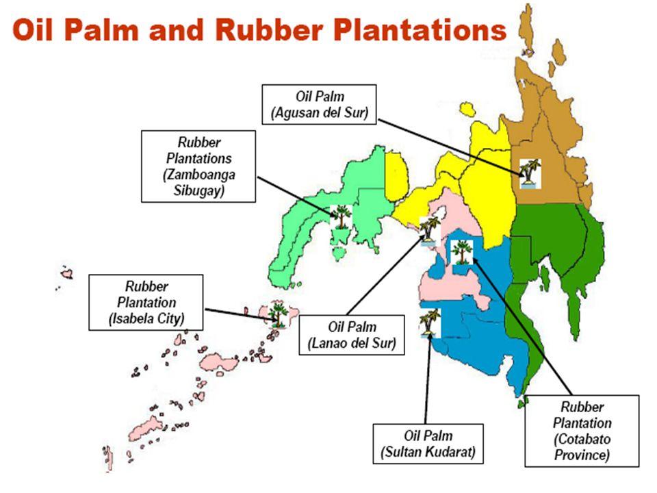 BANANA plantations KompanyaEktaryaLugar Dole-Stanfilco11,904Malaybalay, Valencia, Impasug-ong, Kiataotao, Dangcagan, Don Carlos, Baungon, Lantapan, Ma