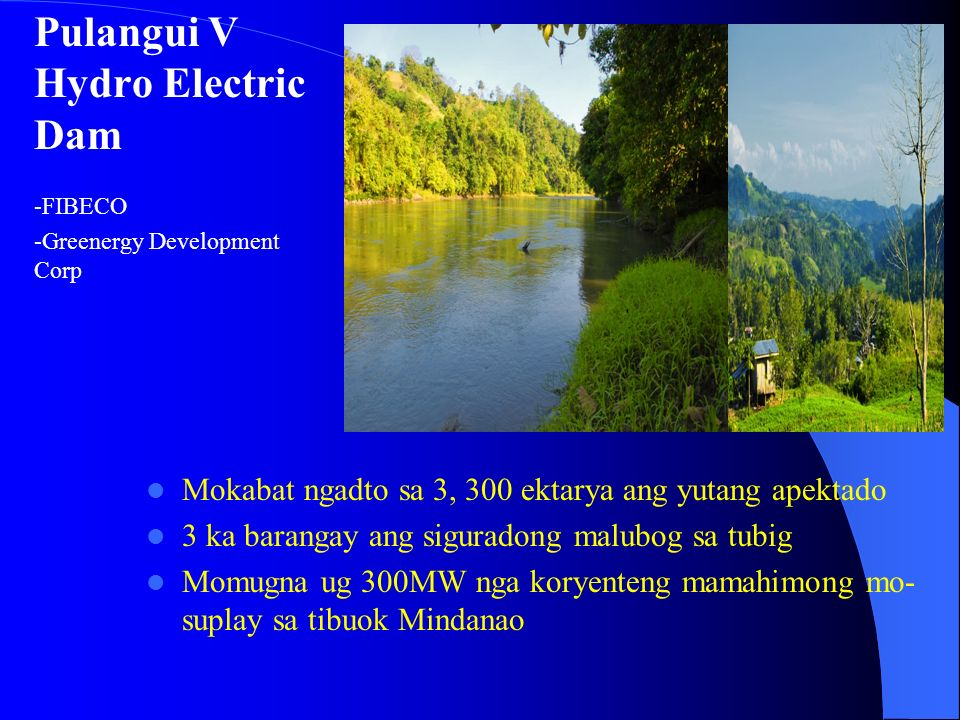 Agusan del Sur LugarMinahanEktarya Esperanza - LoretoShannalyne Environmental and Technological Park 170, 000 San Luis, EsperanzaTambuli Mining Compan