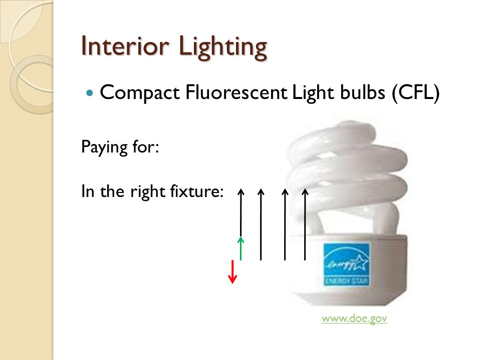 Interior Lighting Compact Fluorescent Light bulbs (CFL)   Paying for: In the right fixture: