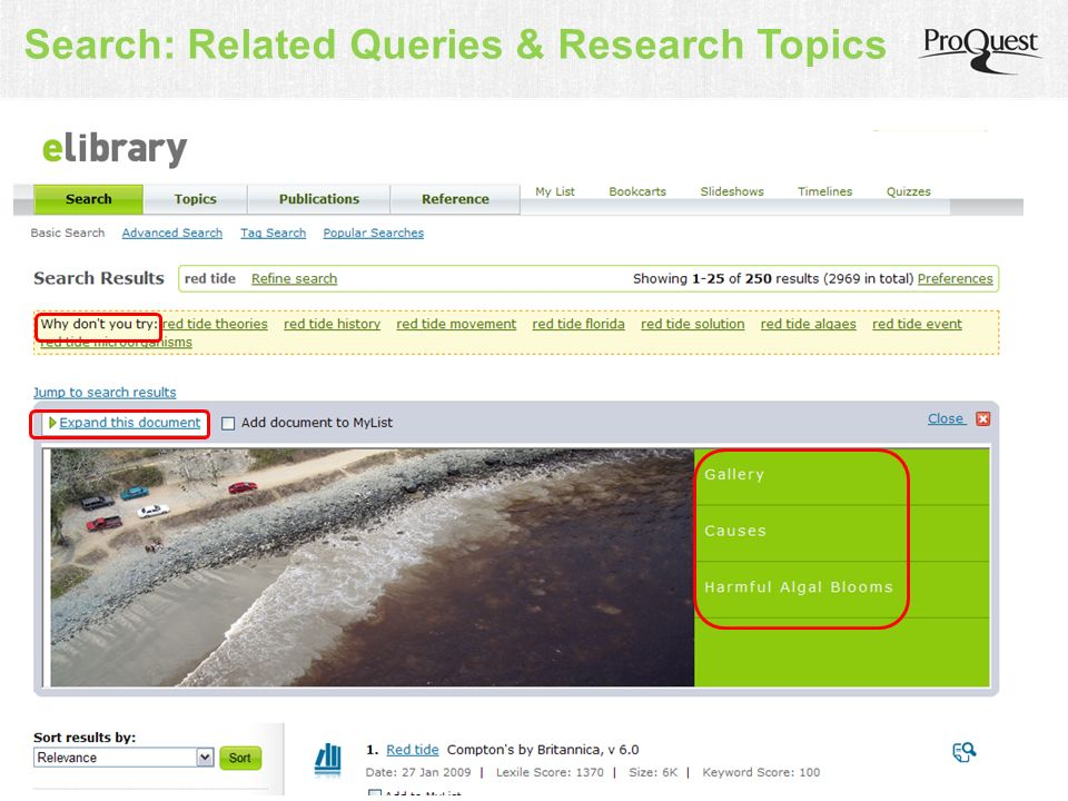 Search: Related Queries & Research Topics