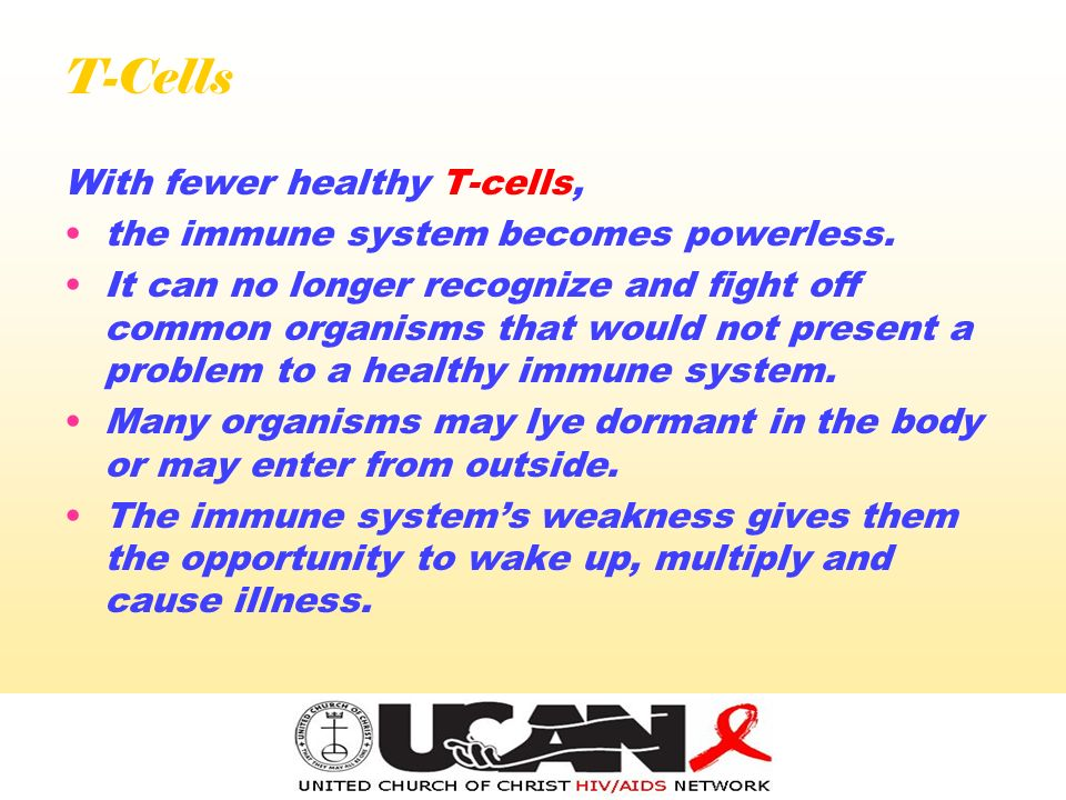 T-Cells With fewer healthy T-cells, the immune system becomes powerless.