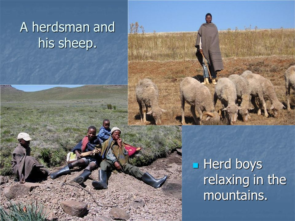 A herdsman and his sheep. Herd boys relaxing in the mountains. Herd boys relaxing in the mountains.