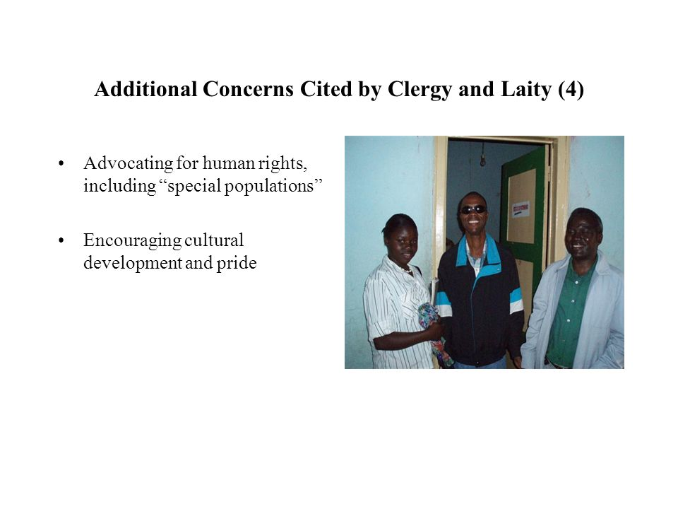 Advocating for human rights, including special populations Encouraging cultural development and pride Additional Concerns Cited by Clergy and Laity (4