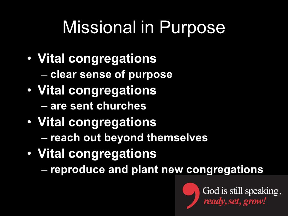 Missional in Purpose Vital congregations –clear sense of purpose Vital congregations –are sent churches Vital congregations –reach out beyond themselves Vital congregations –reproduce and plant new congregations