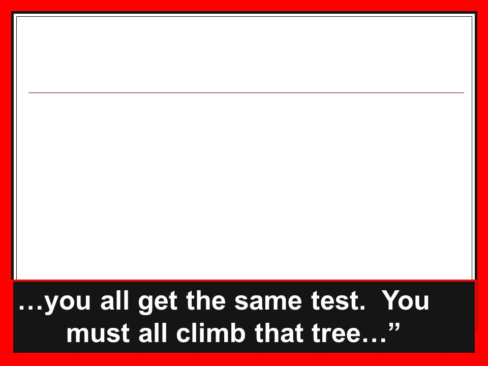 17 …you all get the same test. You must all climb that tree…