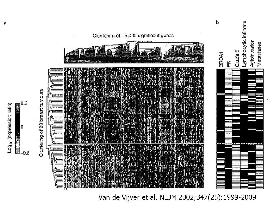 Van de Vijver et al. NEJM 2002;347(25):1999-2009