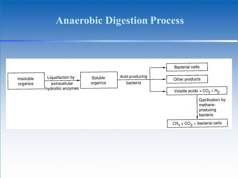 Anaerobic Digestion Process