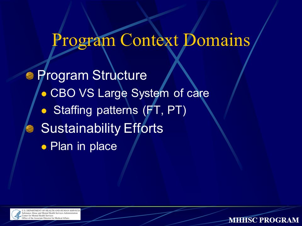 MHHSC PROGRAM Program Context Domains Program Structure CBO VS Large System of care Staffing patterns (FT, PT) Sustainability Efforts Plan in place