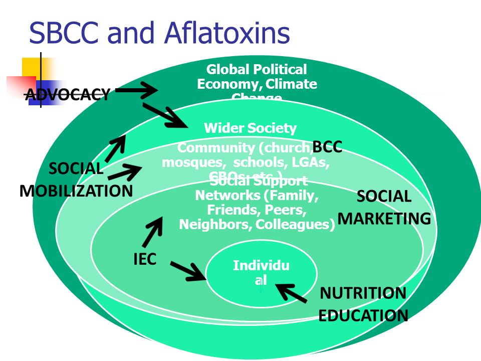 SBCC and Aflatoxins Global Political Economy, Climate Change Wider Society Community (church, mosques, schools, LGAs, CBOs, etc.) Social Support Netwo