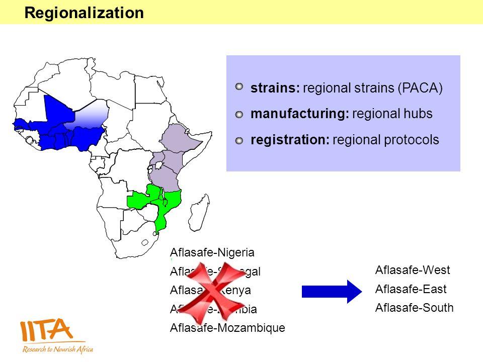 strains: regional strains (PACA) manufacturing: regional hubs registration: regional protocols Aflasafe-Nigeria Aflasafe-Senegal Aflasafe-Kenya Aflasafe-Zambia Aflasafe-Mozambique Aflasafe-West Aflasafe-East Aflasafe-South Regionalization