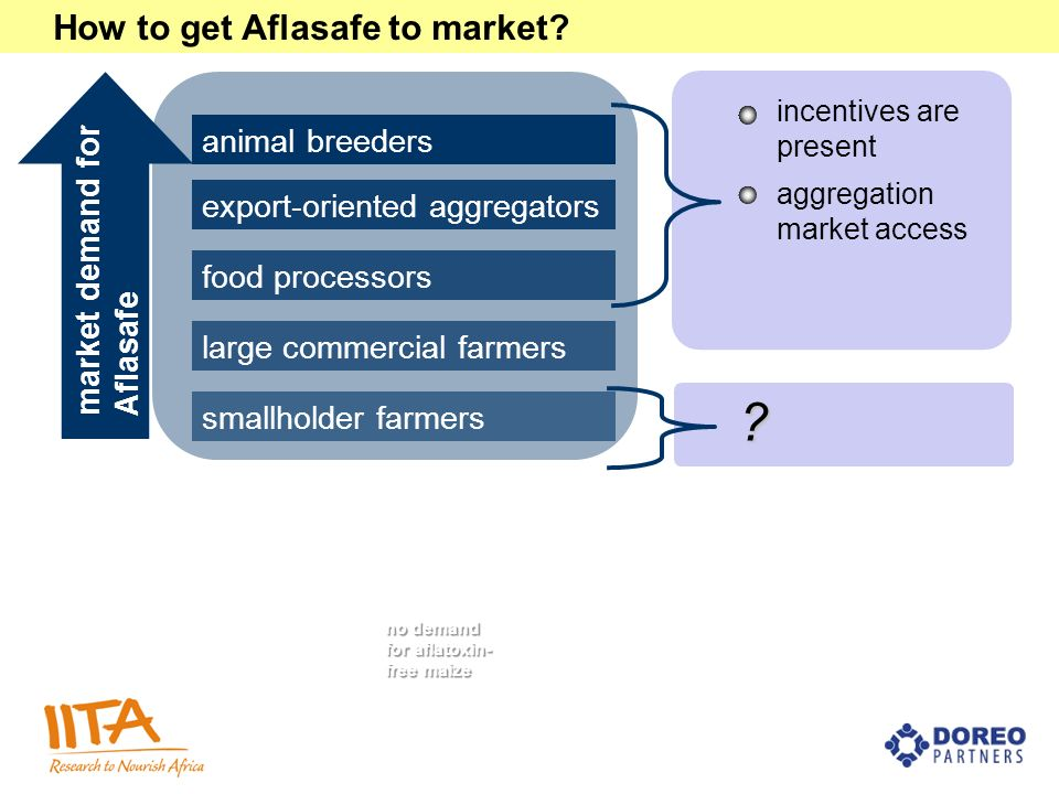 animal breeders export-oriented aggregators food processors large commercial farmers smallholder farmers How to get Aflasafe to market? incentives are