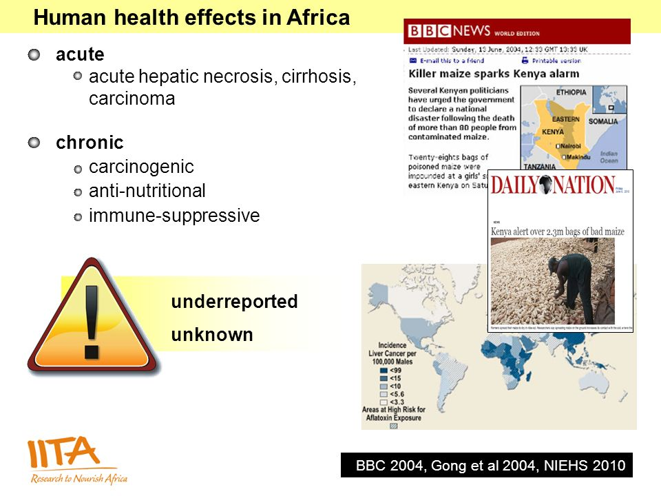 Human health effects in Africa acute acute hepatic necrosis, cirrhosis, carcinoma chronic carcinogenic anti-nutritional immune-suppressive BBC 2004, G