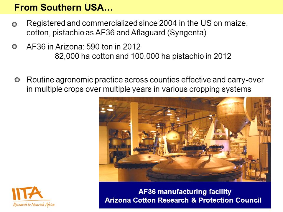 From Southern USA… Registered and commercialized since 2004 in the US on maize, cotton, pistachio as AF36 and Aflaguard (Syngenta) AF36 in Arizona: 590 ton in ,000 ha cotton and 100,000 ha pistachio in 2012 Routine agronomic practice across counties effective and carry-over in multiple crops over multiple years in various cropping systems AF36 manufacturing facility Arizona Cotton Research & Protection Council