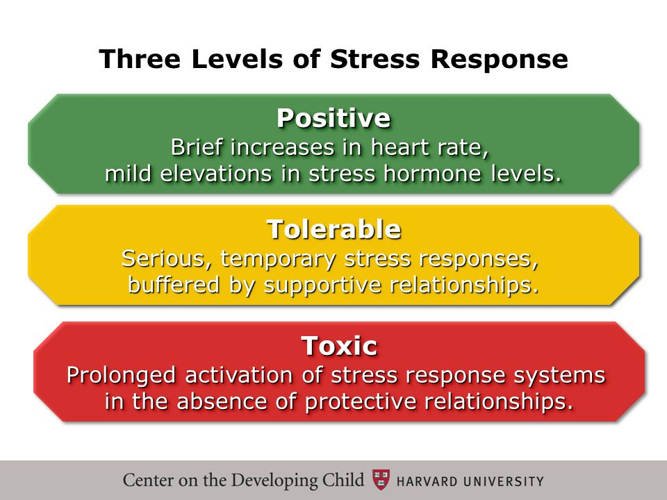 Toxic Prolonged activation of stress response systems in the absence of protective relationships. Toxic Three Levels of Stress Response Tolerable Seri