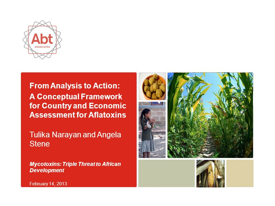 Abt Associates   pg 2 Presentation Roadmap Objective of the country and economic assessment Conceptual framework and research methods Aflatoxin prevalence data for maize and groundnuts Characterization of risk factors: method and findings Economic impact of aflatoxin contamination Identification and prioritization of viable control strategies through in-country workshops