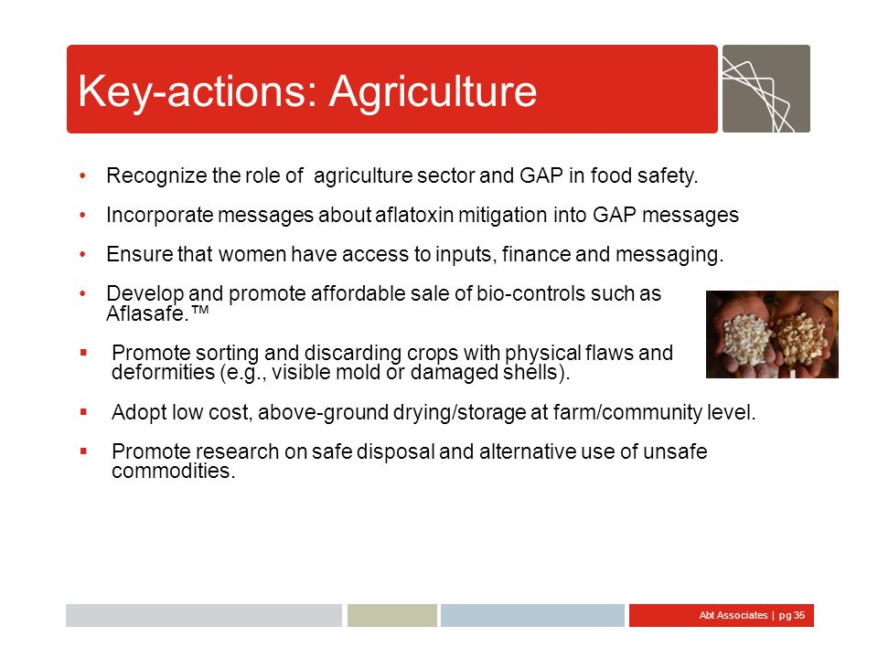 Abt Associates | pg 35 Key-actions: Agriculture Recognize the role of agriculture sector and GAP in food safety. Incorporate messages about aflatoxin