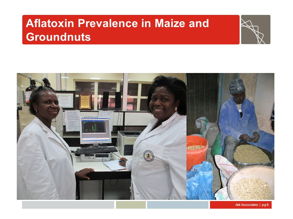 Abt Associates   pg 27 Estimating Health Impact Aflatoxin Contaminatio n (ng/g) Aflatoxin Contaminatio n (ng/g) Consumption (gram/day) Consumption (gram/day) Body Weight (kg) Body Weight (kg) Exposure to Aflatoxins (ng/kg-bw/day) Exposure to Aflatoxins (ng/kg-bw/day) Shares of HBV positive population Liver Cancer Cases (number/year) Liver Cancer Cases (number/year) Exposure to Aflatoxins (ng/kg-bw/day) Exposure to Aflatoxins (ng/kg-bw/day) Population (2010 projected) Population (2010 projected) Share of HBV positive population Cancer Potency for HBV Positive (0.3 per 100,000) Cancer Potency for HBV Positive (0.3 per 100,000) Cancer Potency for HBV Negative (0.01 per 100,000 ) Cancer Potency for HBV Negative (0.01 per 100,000 ) Sum of: Population Risk (Cancers/year/ 100,000