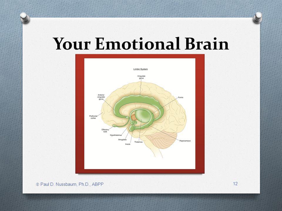 Your Emotional Brain Paul D. Nussbaum, Ph.D., ABPP 12