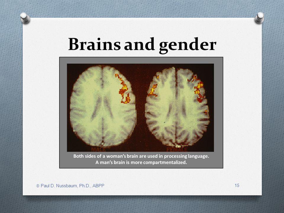 Brains and gender Paul D. Nussbaum, Ph.D., ABPP 15