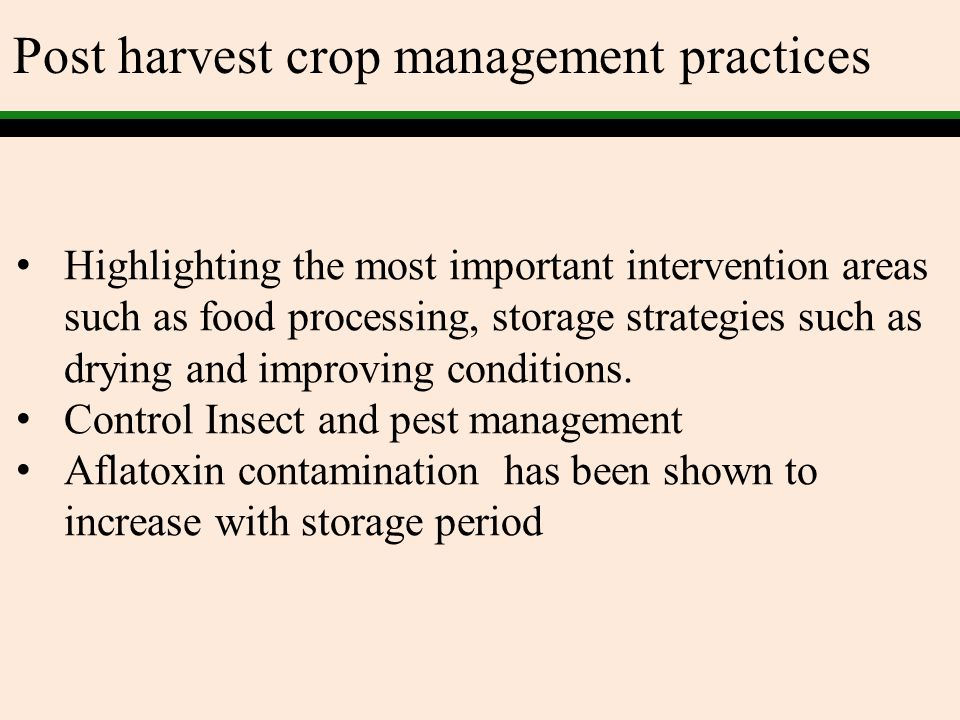 Post harvest crop management practices Highlighting the most important intervention areas such as food processing, storage strategies such as drying a