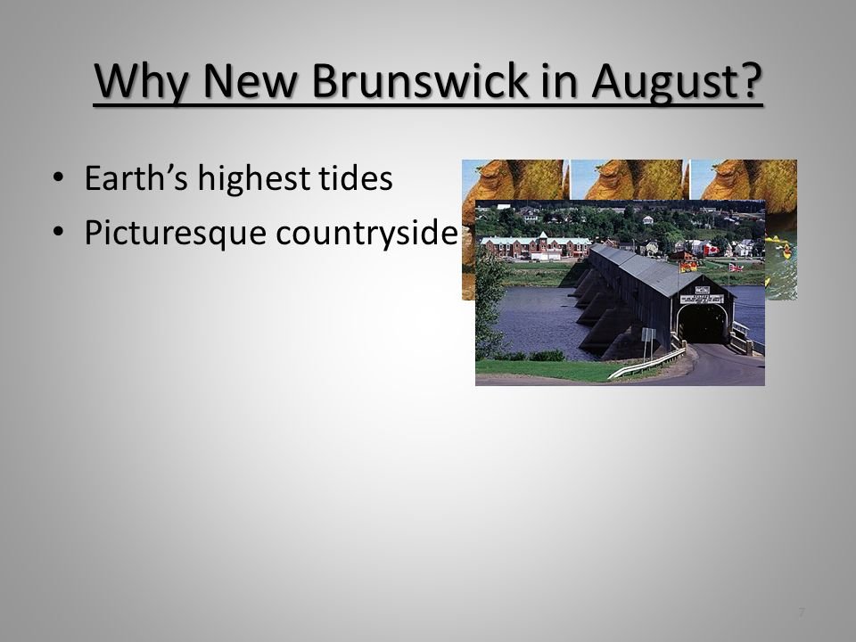 Why New Brunswick in August Earths highest tides Picturesque countryside 7