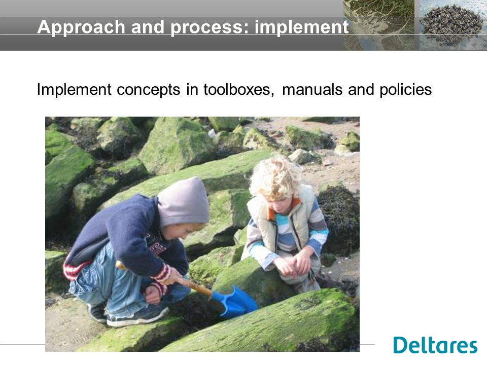 Approach and process: implement Implement concepts in toolboxes, manuals and policies
