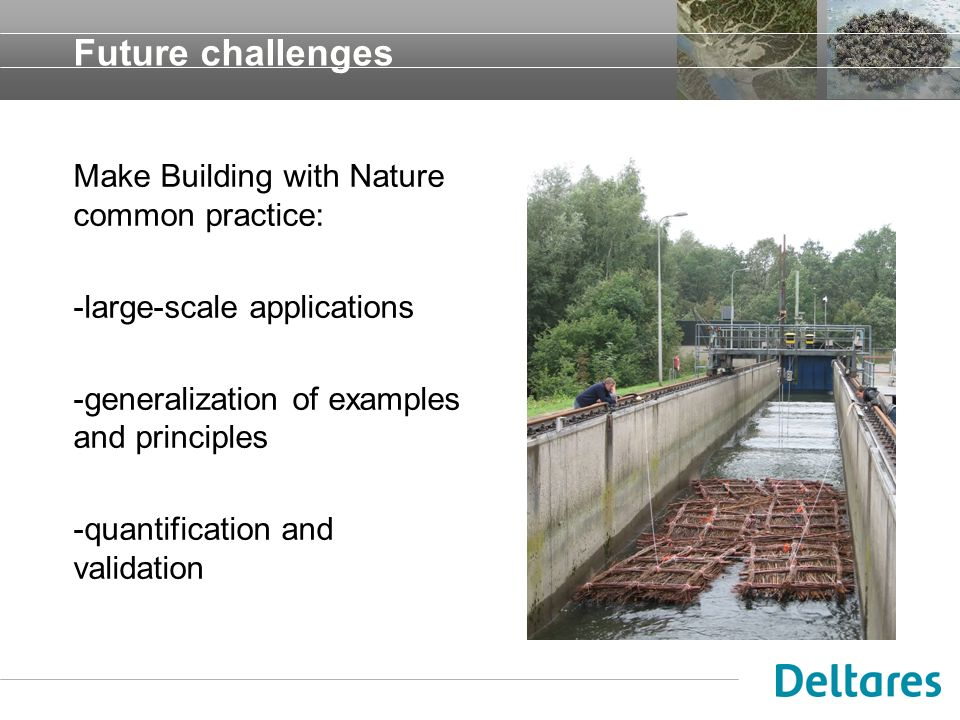 Future challenges Make Building with Nature common practice: -large-scale applications -generalization of examples and principles -quantification and
