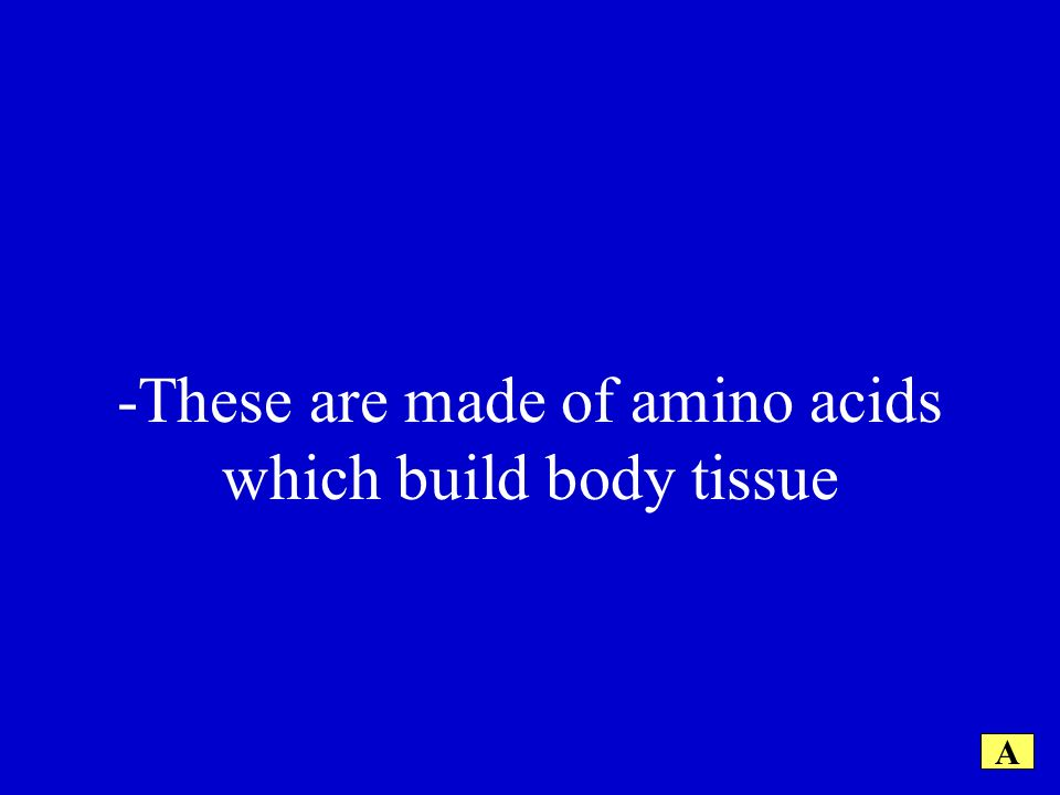 -These are made of amino acids which build body tissue A