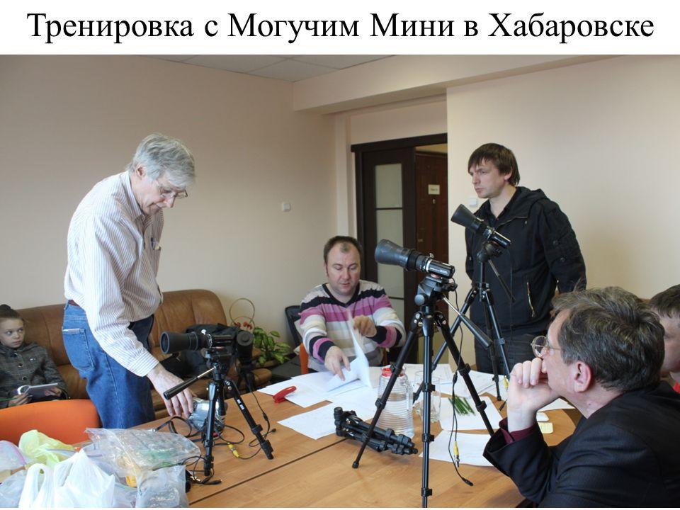 Тренировка с Могучим Мини в Хабаровске