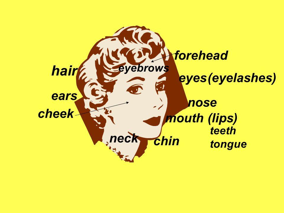 eyes nose mouth(lips) forehead hair chin neck ears cheek eyebrows (eyelashes) teeth tongue