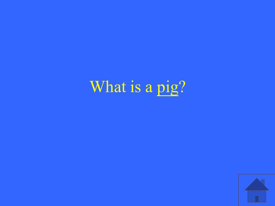 What is a pig?