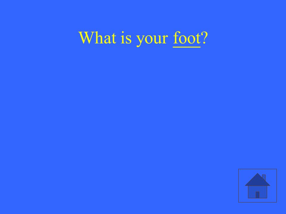 What is your foot?