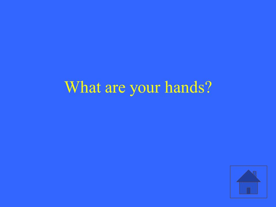 What are your hands?